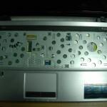 DSCN5449